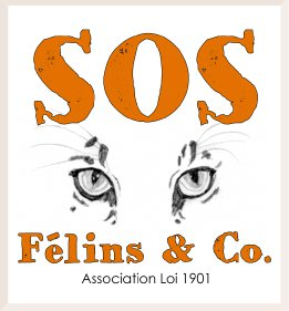 Groupe Leader SOS Félins & co - Protection de la faune