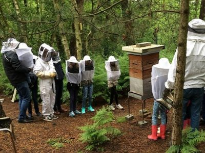 leader biodiversité environnement abeilles rse